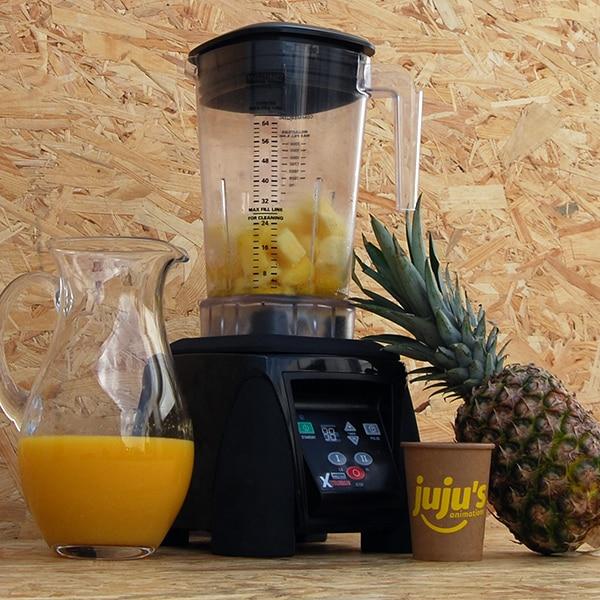 blender ananas